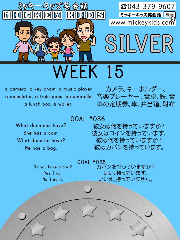 MK-WEEK-15-Silver-Goal-#86