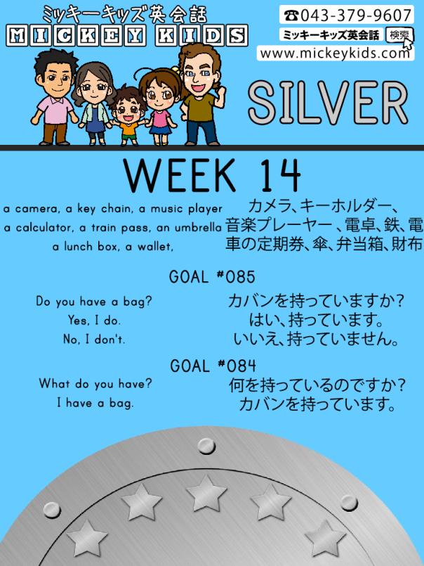 MK-Week14-SILVER-Goal85